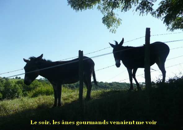 http://maud96.cowblog.fr/images/1/RRessinsanescontrejour.jpg