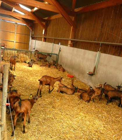 http://maud96.cowblog.fr/images/1/Ressinschevres.jpg