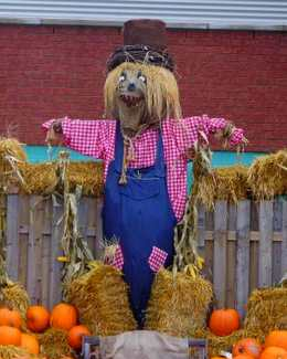 http://maud96.cowblog.fr/images/Avril2010/Halloweenepouvantail.jpg
