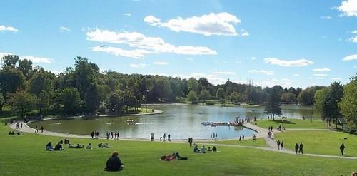 http://maud96.cowblog.fr/images/MontrealLacauxcastors.jpg