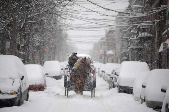 http://maud96.cowblog.fr/images/MontrealNoel2008chevalneige.jpg